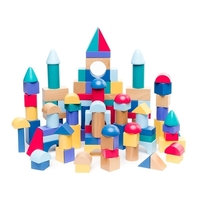 Learning Can Be Fun - Build and Play Blocks (set of 100)