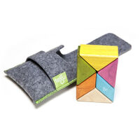 Tegu - Pocket Pouch Prism 6pc - Tints