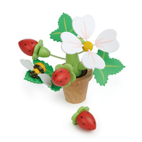 Tender Leaf - Strawberry Flower Pot